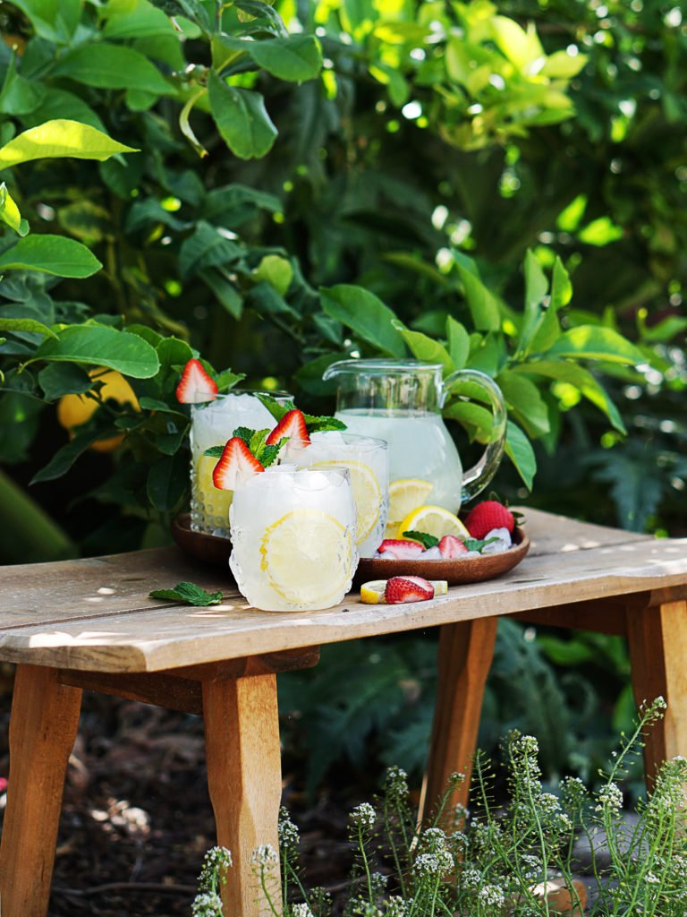 A bench with a jar of lemonade and cocktail glasses. Lemon tree in the background