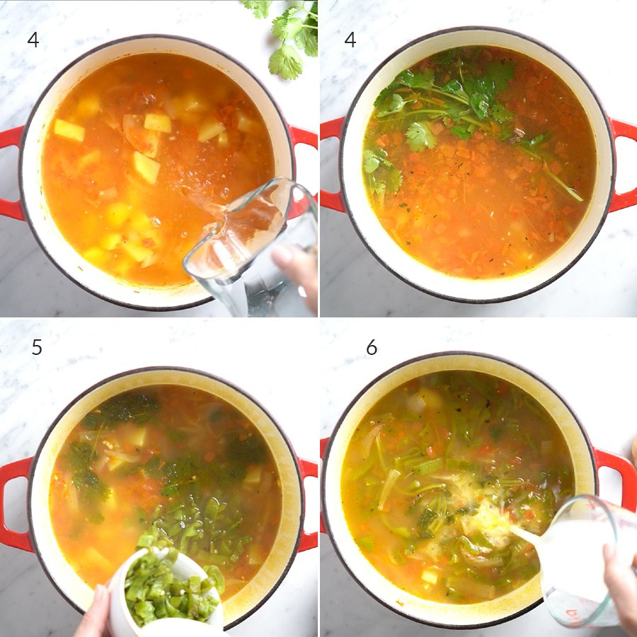 Step by step instructions on how to cook the caldo in a pot