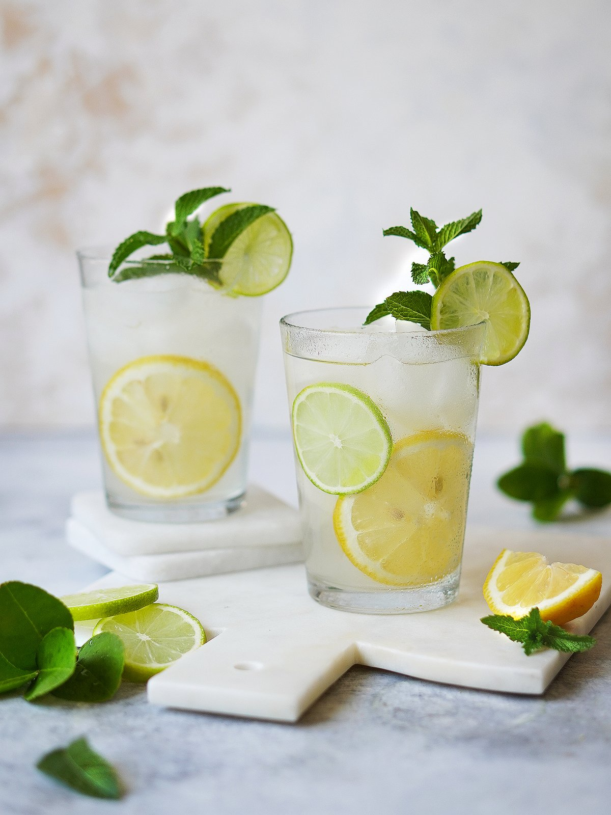 Two glasses filled with a clear drink and lemons & limes as garnish