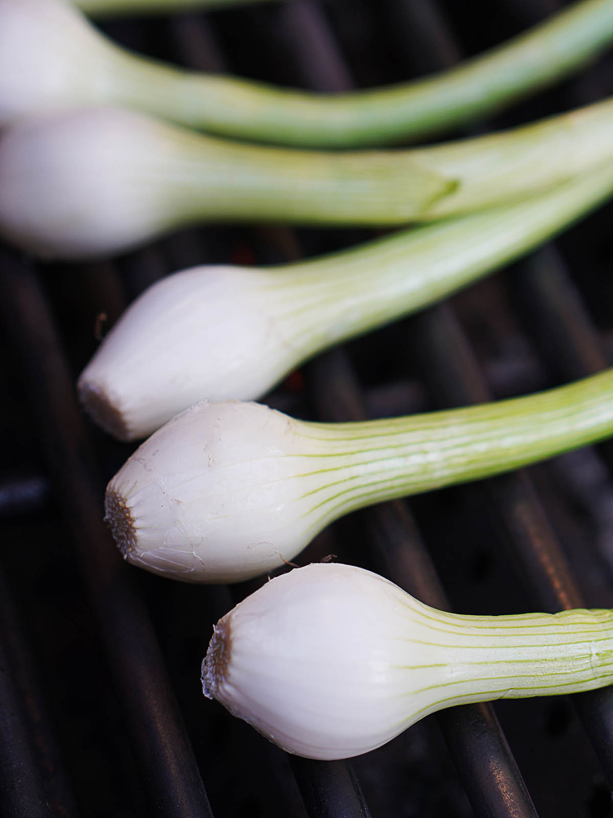 Raw green onions on the grill.